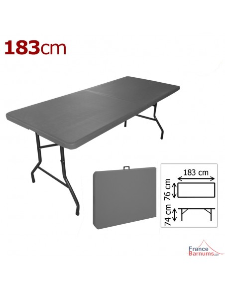 Table pliante en valise grise 183cm